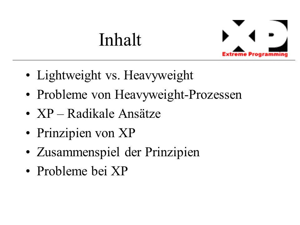 Inhalt Lightweight vs. Heavyweight Probleme von Heavyweight-Prozessen XP – Radikale Ansätze Prinzipien von XP Zusammenspiel der Prinzipien Probleme be