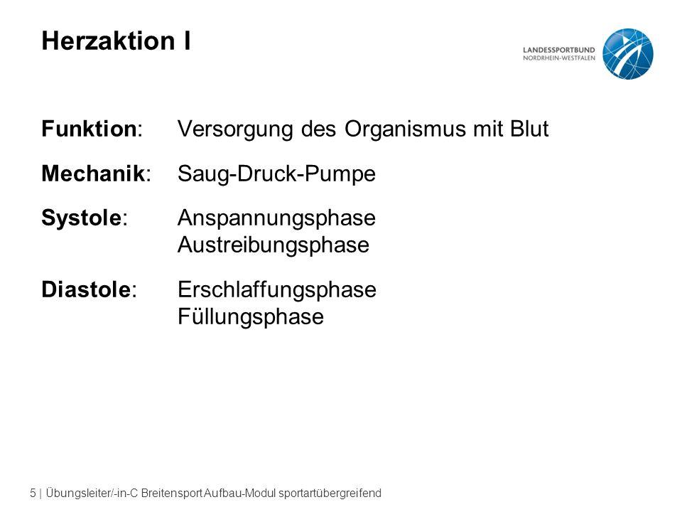 5 | Übungsleiter/-in-C Breitensport Aufbau-Modul sportartübergreifend Herzaktion I Funktion:Versorgung des Organismus mit Blut Mechanik: Saug-Druck-Pu