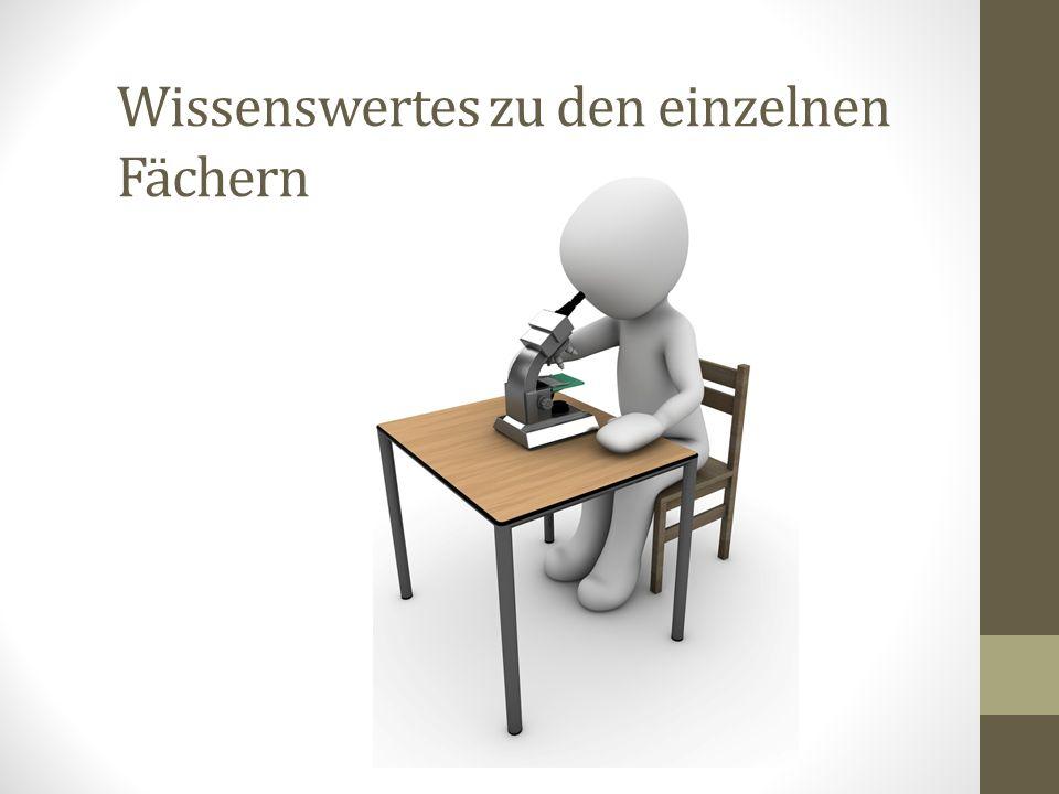 Allgemeines zur Klasse und zur Schule  Mittelholzschulhaus:  5 Klassen 5./6. Klasse und je 3. und 4. Klasse  Schulleitung: Herr N. Moret (Herr R. M