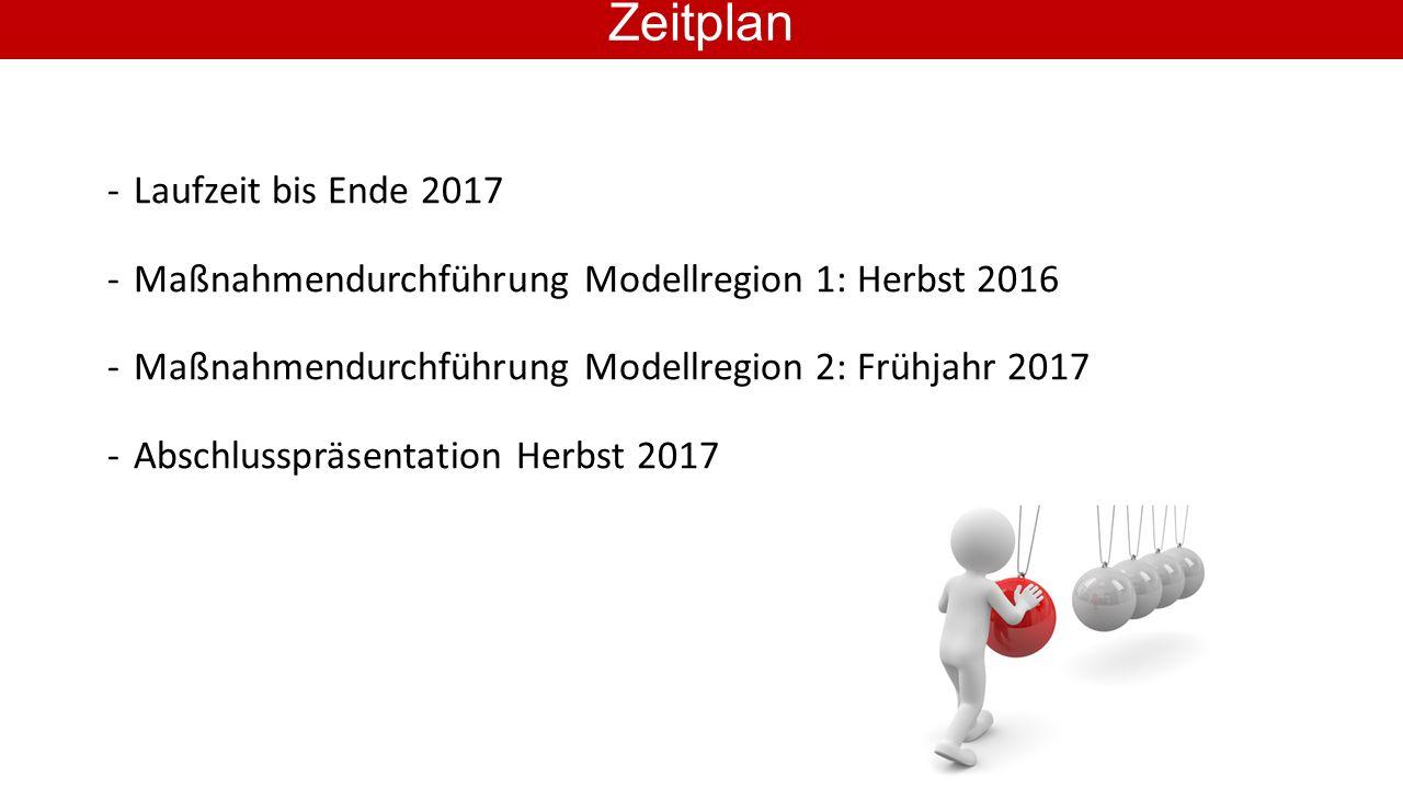 -Laufzeit bis Ende 2017 -Maßnahmendurchführung Modellregion 1: Herbst 2016 -Maßnahmendurchführung Modellregion 2: Frühjahr 2017 -Abschlusspräsentation Herbst 2017 Zeitplan