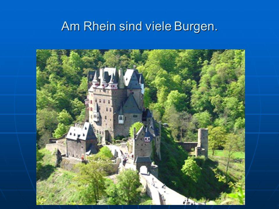 Am Rhein sind viele Burgen.