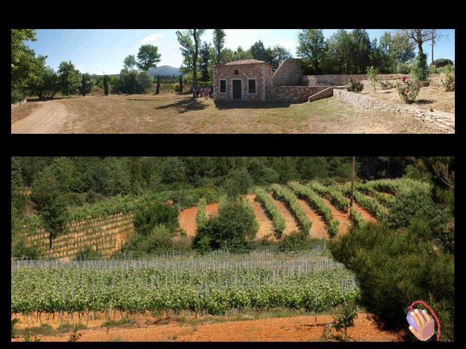 Mantinia Weinstrasse BBesuch Weingut TSELEPOS in Arkadia Führung von : H er Giannis Tselepos - Besitzer - enologist + Eleni – PR Manager
