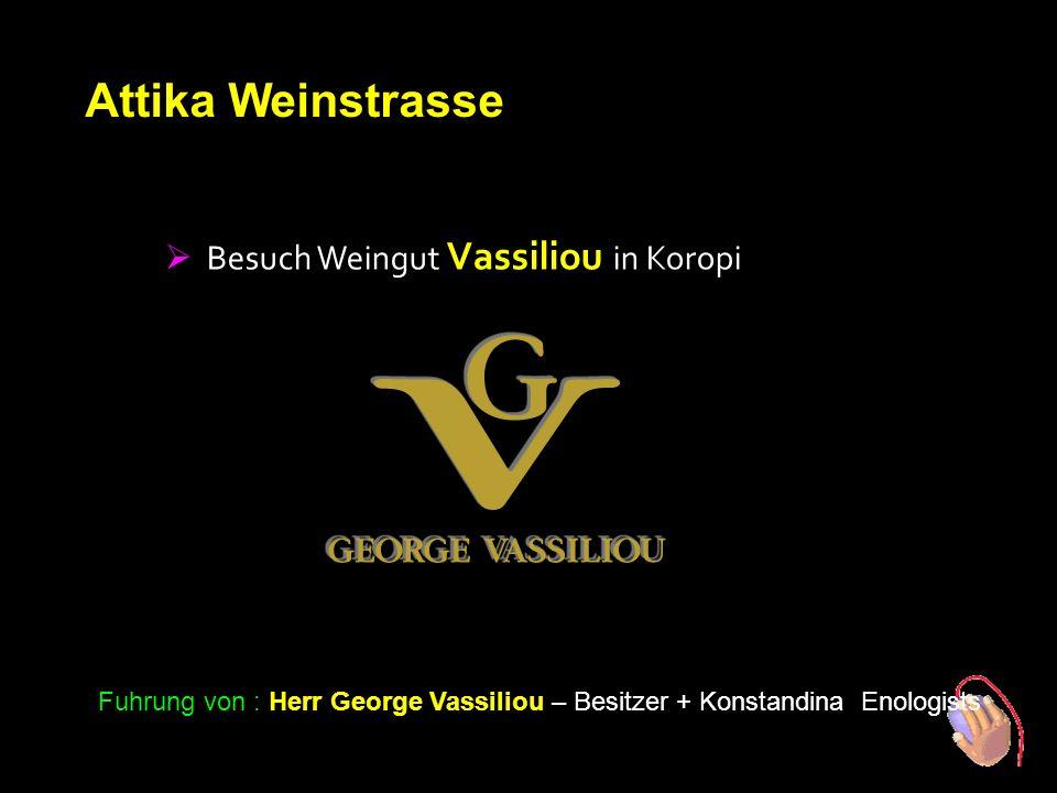 1. Tag Attika Weinstrasse  Besuch Weingut Vassiliou in Koropi