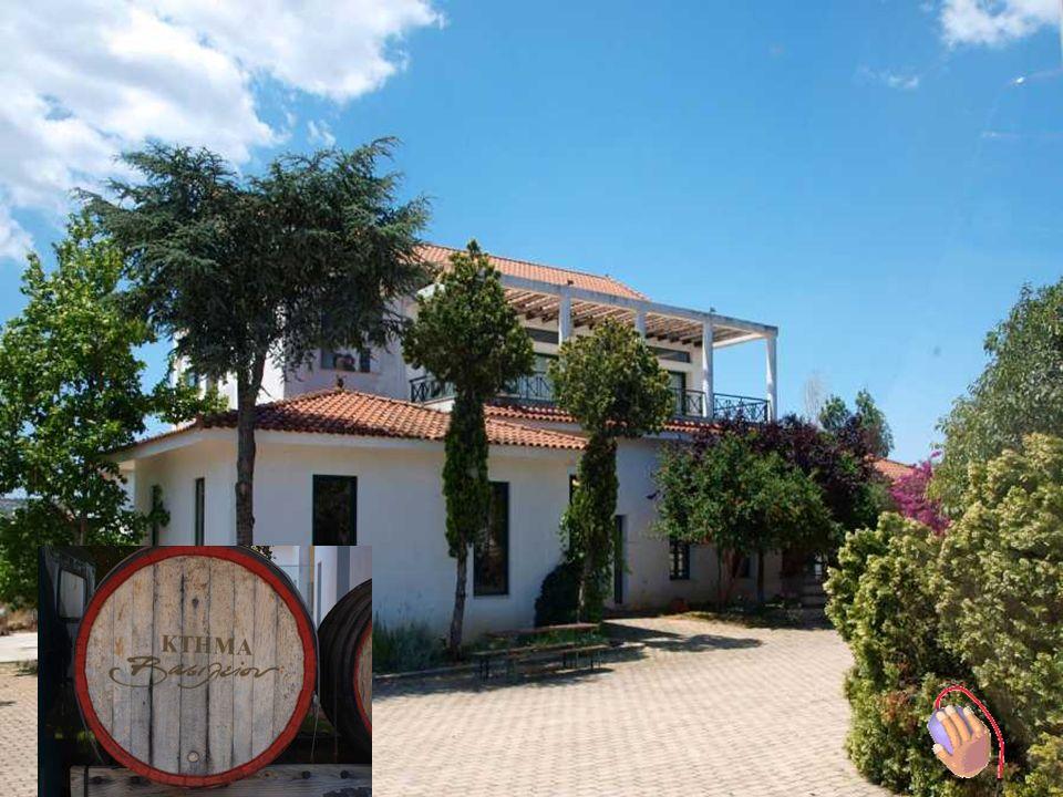 Attika Weinstrasse BBesuch Weingut Vassiliou in Koropi Fuhrung von : Herr George Vassiliou – Besitzer + Konstandina Enologists