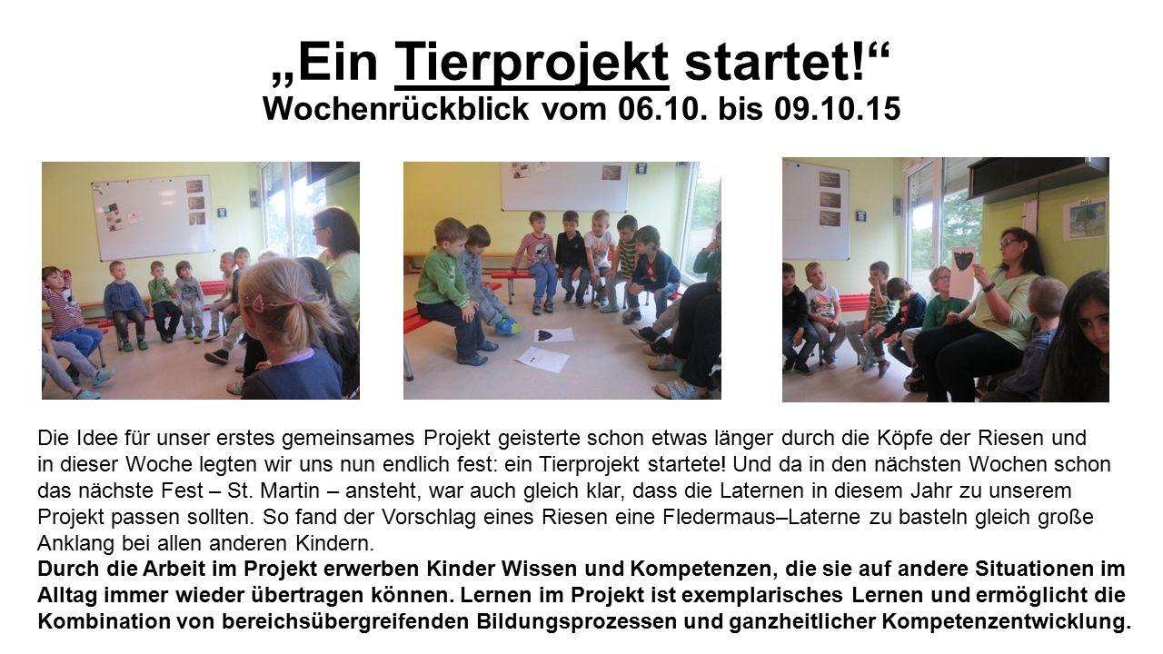 """""""Ein Tierprojekt startet! Wochenrückblick vom 06.10."""