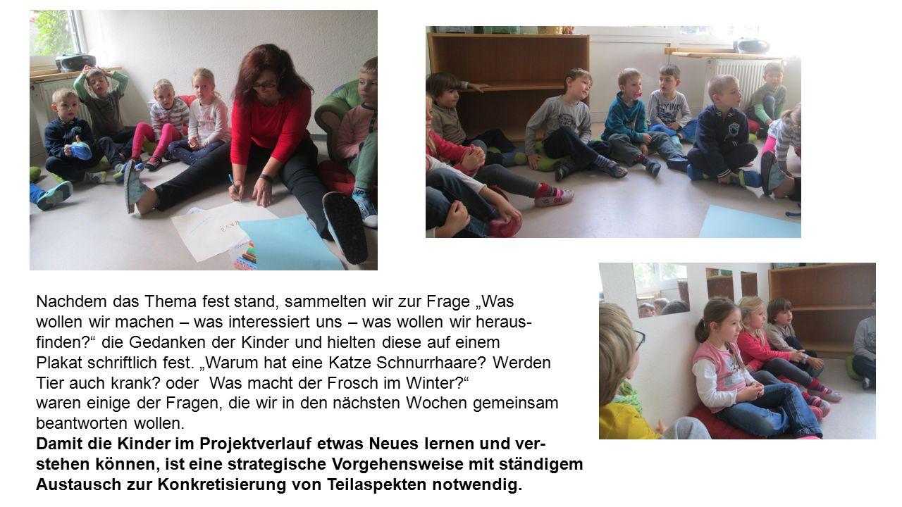 """Nachdem das Thema fest stand, sammelten wir zur Frage """"Was wollen wir machen – was interessiert uns – was wollen wir heraus- finden die Gedanken der Kinder und hielten diese auf einem Plakat schriftlich fest."""