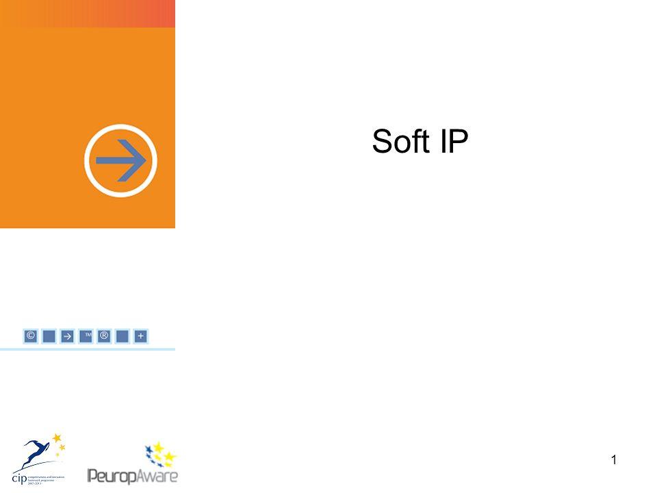 42 Welche Risiken bestehen für Soft IP-Rechte.