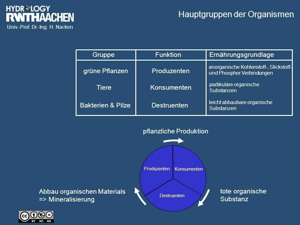 Univ.-Prof. Dr.-Ing. H.