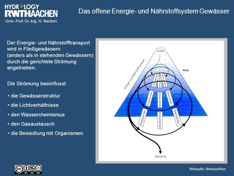 Univ.-Prof. Dr.-Ing. H. Nacken Filtrierer