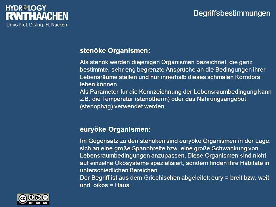Univ.-Prof. Dr.-Ing. H. Nacken ▼ Grundwasserebene Benthal Das hyporheische Interstitial