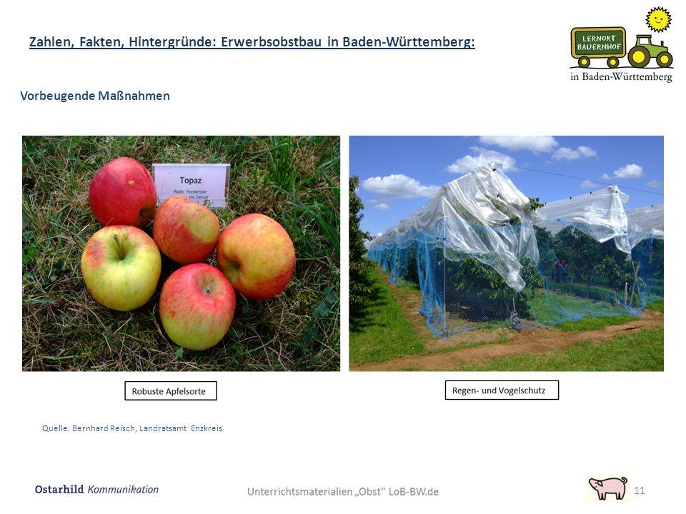 11 Zahlen, Fakten, Hintergründe: Erwerbsobstbau in Baden-Württemberg: Vorbeugende Maßnahmen Quelle: Bernhard Reisch, Landratsamt Enzkreis