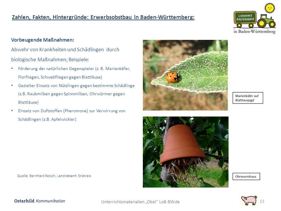 13 Zahlen, Fakten, Hintergründe: Erwerbsobstbau in Baden-Württemberg: Vorbeugende Maßnahmen: Abwehr von Krankheiten und Schädlingen durch biologische