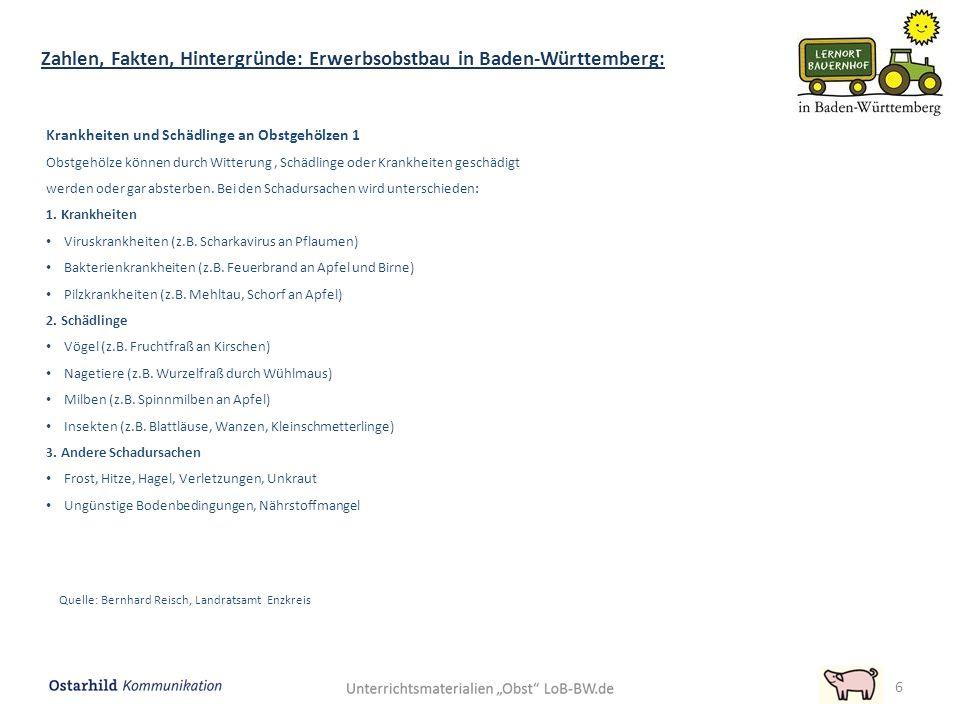 6 Zahlen, Fakten, Hintergründe: Erwerbsobstbau in Baden-Württemberg: Krankheiten und Schädlinge an Obstgehölzen 1 Obstgehölze können durch Witterung, Schädlinge oder Krankheiten geschädigt werden oder gar absterben.