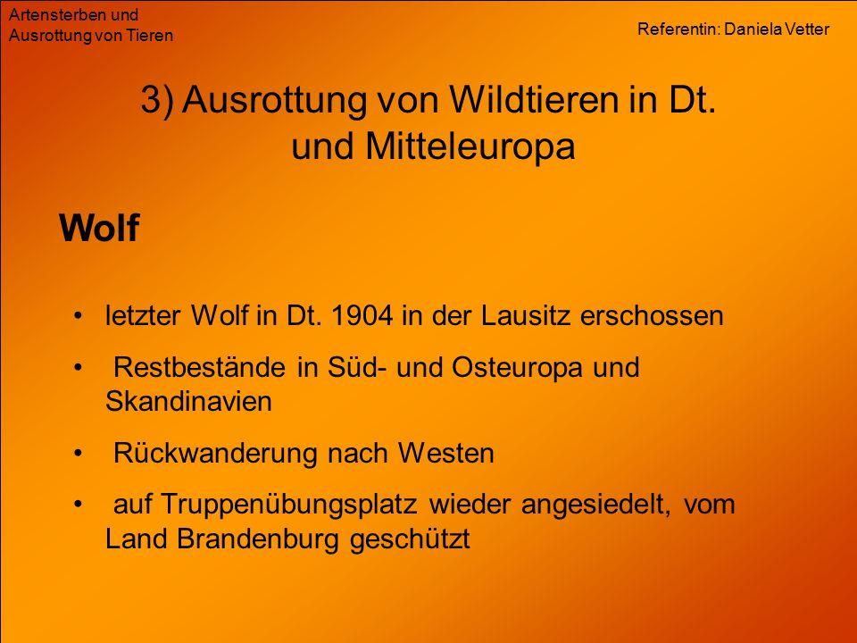 Referentin: Daniela Vetter Artensterben und Ausrottung von Tieren 3) Ausrottung von Wildtieren in Dt. und Mitteleuropa Wolf letzter Wolf in Dt. 1904 i