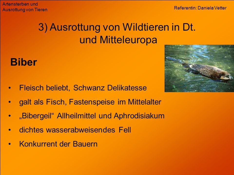 Referentin: Daniela Vetter Artensterben und Ausrottung von Tieren 3) Ausrottung von Wildtieren in Dt. und Mitteleuropa Biber Fleisch beliebt, Schwanz