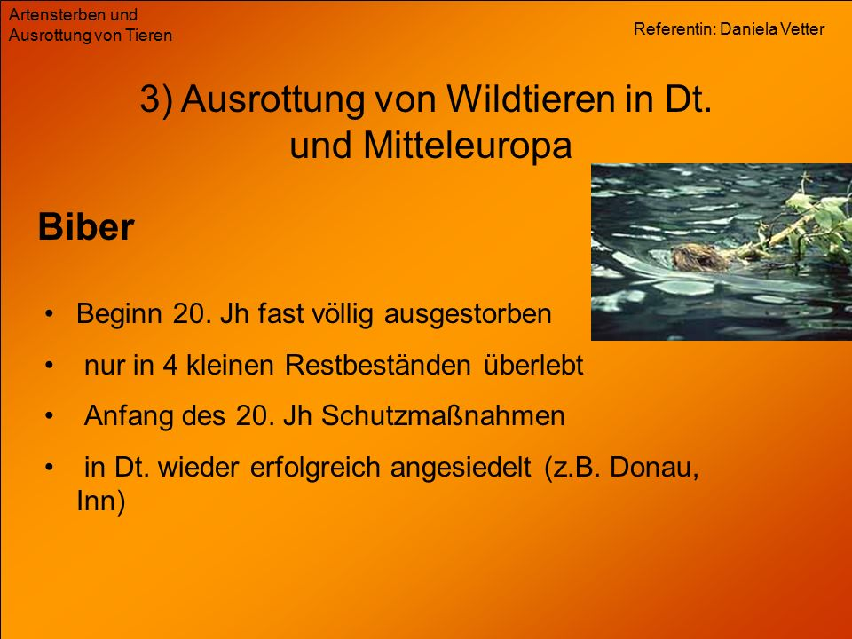 Referentin: Daniela Vetter Artensterben und Ausrottung von Tieren Biber 3) Ausrottung von Wildtieren in Dt.