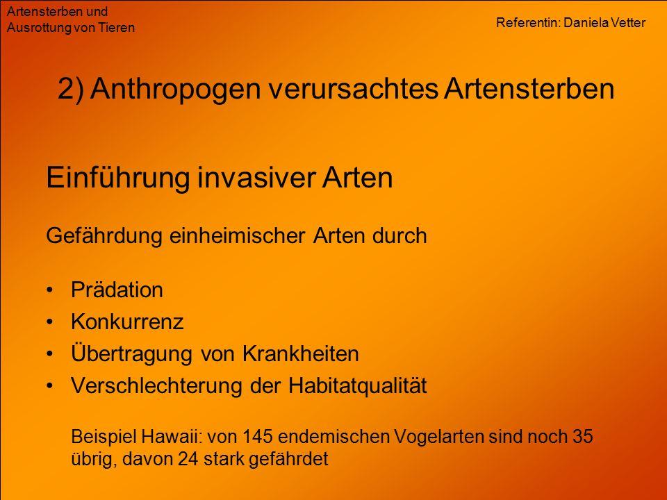 Referentin: Daniela Vetter Artensterben und Ausrottung von Tieren Einführung invasiver Arten Gefährdung einheimischer Arten durch 2) Anthropogen verur