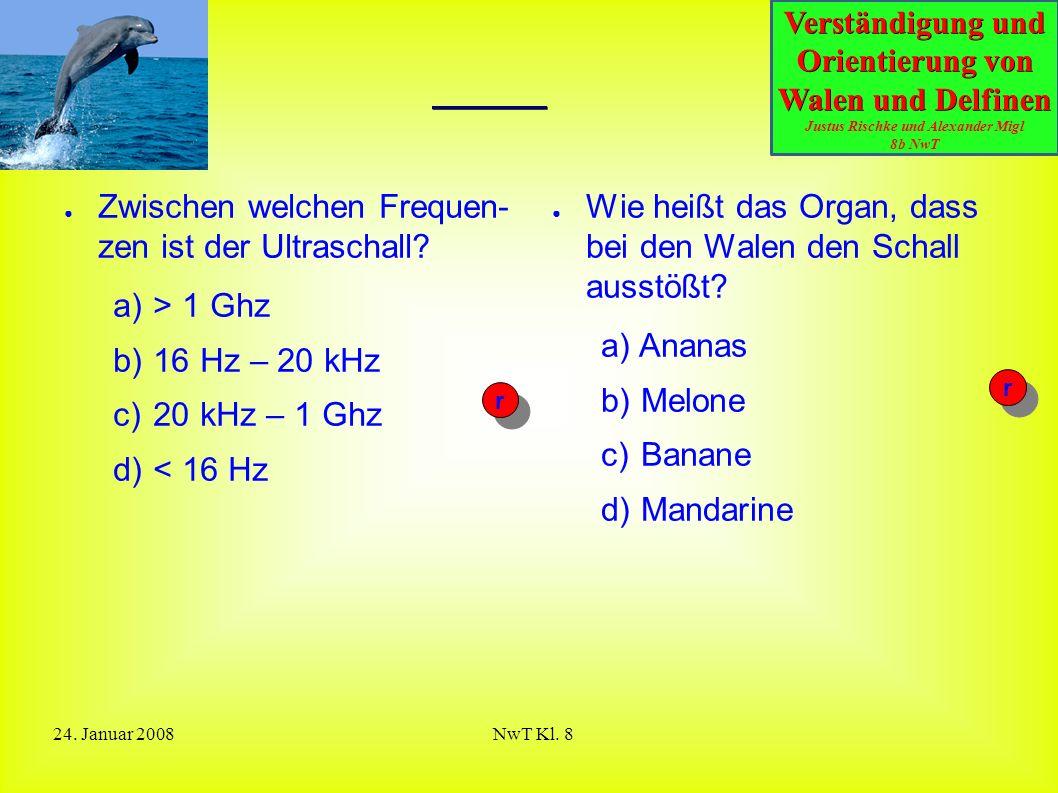 Verständigung und Orientierung von Walen und Delfinen Justus Rischke und Alexander Migl 8b NwT 24. Januar 2008NwT Kl. 8 Quiz ● Zwischen welchen Freque