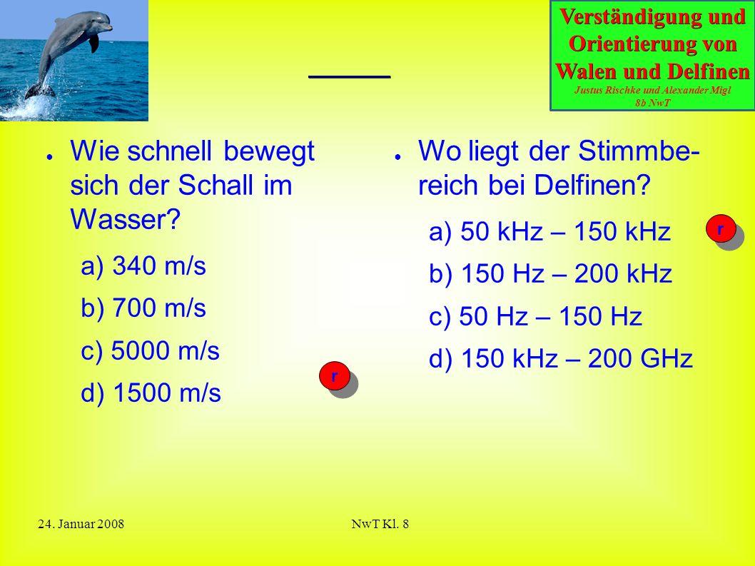 Verständigung und Orientierung von Walen und Delfinen Justus Rischke und Alexander Migl 8b NwT 24. Januar 2008NwT Kl. 8 Quiz ● Wie schnell bewegt sich