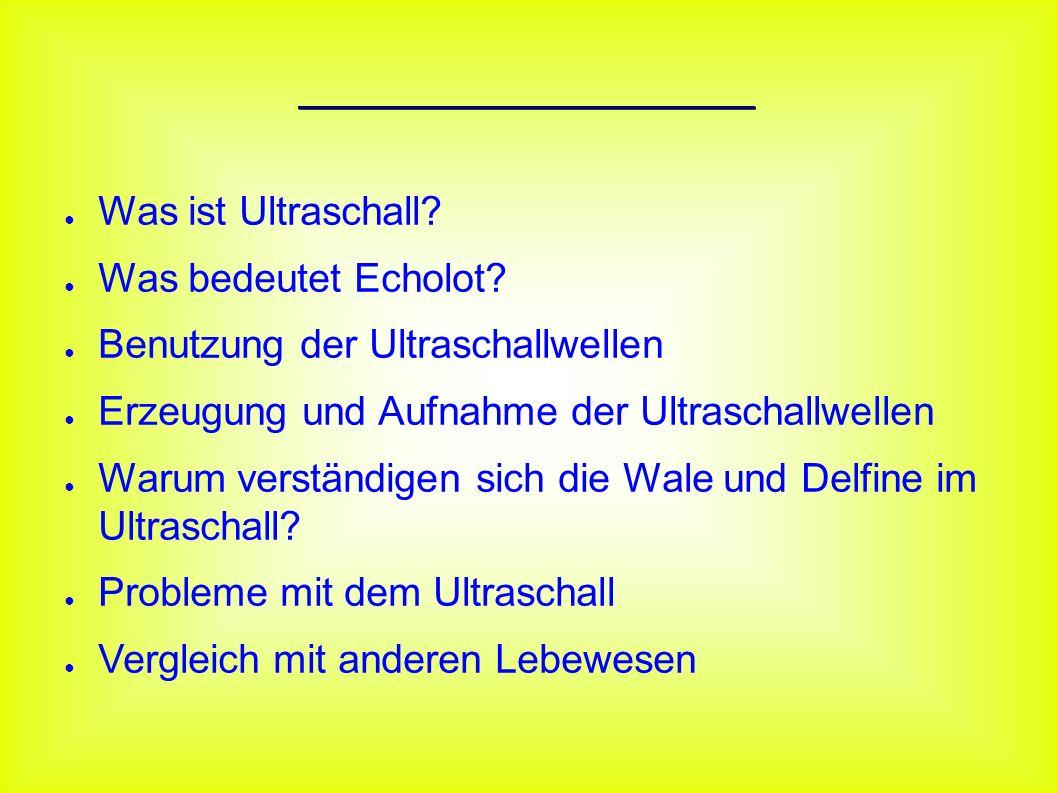 Inhaltsverzeichnis ● Was ist Ultraschall? ● Was bedeutet Echolot? ● Benutzung der Ultraschallwellen ● Erzeugung und Aufnahme der Ultraschallwellen ● W