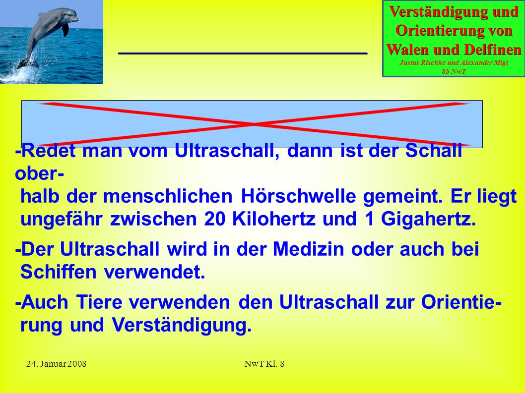 Verständigung und Orientierung von Walen und Delfinen Justus Rischke und Alexander Migl 8b NwT 24. Januar 2008NwT Kl. 8 Was ist Ultraschall? -Redet ma