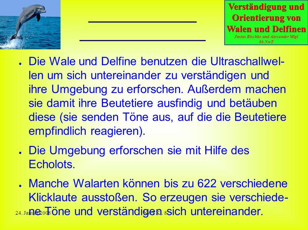 Verständigung und Orientierung von Walen und Delfinen Justus Rischke und Alexander Migl 8b NwT 24. Januar 2008NwT Kl. 8 Benutzung der Ultraschallwelle