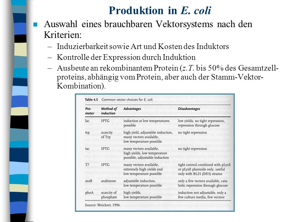 Produktion in E. coli n Auswahl eines brauchbaren Vektorsystems nach den Kriterien: –Induzierbarkeit sowie Art und Kosten des Induktors –Kontrolle der