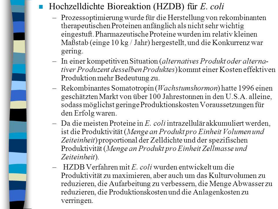 n Hochzelldichte Bioreaktion (HZDB) für E.