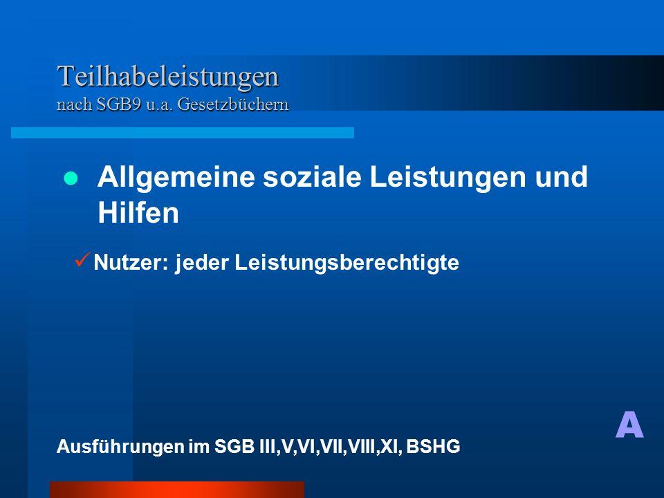 Teilhabeleistungen nach SGB9 u.a.