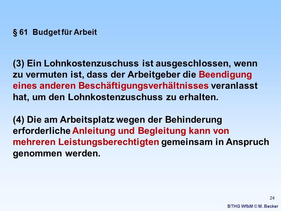 24 BTHG WfbM © M. Becker § 61 Budget für Arbeit (3) Ein Lohnkostenzuschuss ist ausgeschlossen, wenn zu vermuten ist, dass der Arbeitgeber die Beendigu