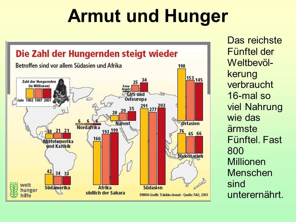 Armut und Hunger Das reichste Fünftel der Weltbevöl- kerung verbraucht 16-mal so viel Nahrung wie das ärmste Fünftel. Fast 800 Millionen Menschen sind