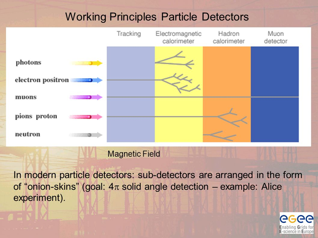 Working Principles Particle Detectors Magnetic Field In modern particle detectors: sub-detectors are arranged in the form of onion-skins (goal: 4  solid angle detection – example: Alice experiment).