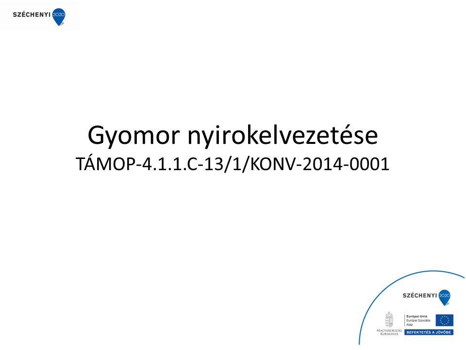 Gyomor nyirokelvezetése TÁMOP-4.1.1.C-13/1/KONV-2014-0001