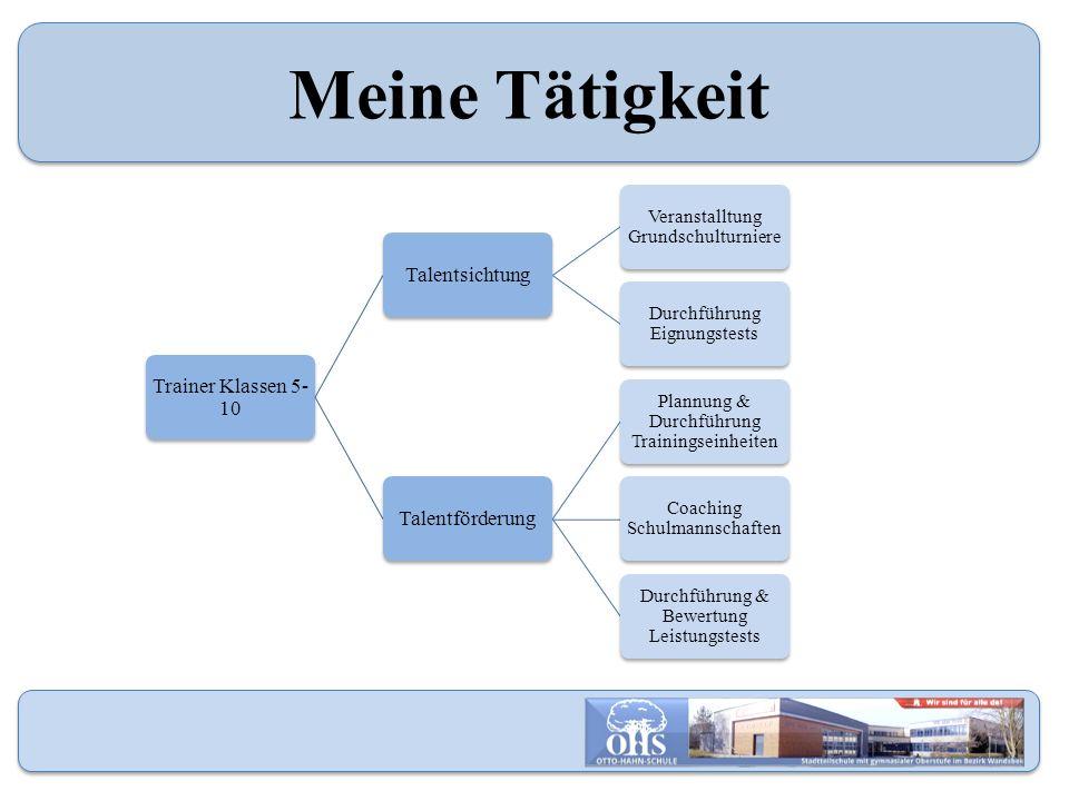 Meine Tätigkeit Trainer Klassen 5- 10 Talentsichtung Veranstalltung Grundschulturniere Durchführung Eignungstests Talentförderung Plannung & Durchführ