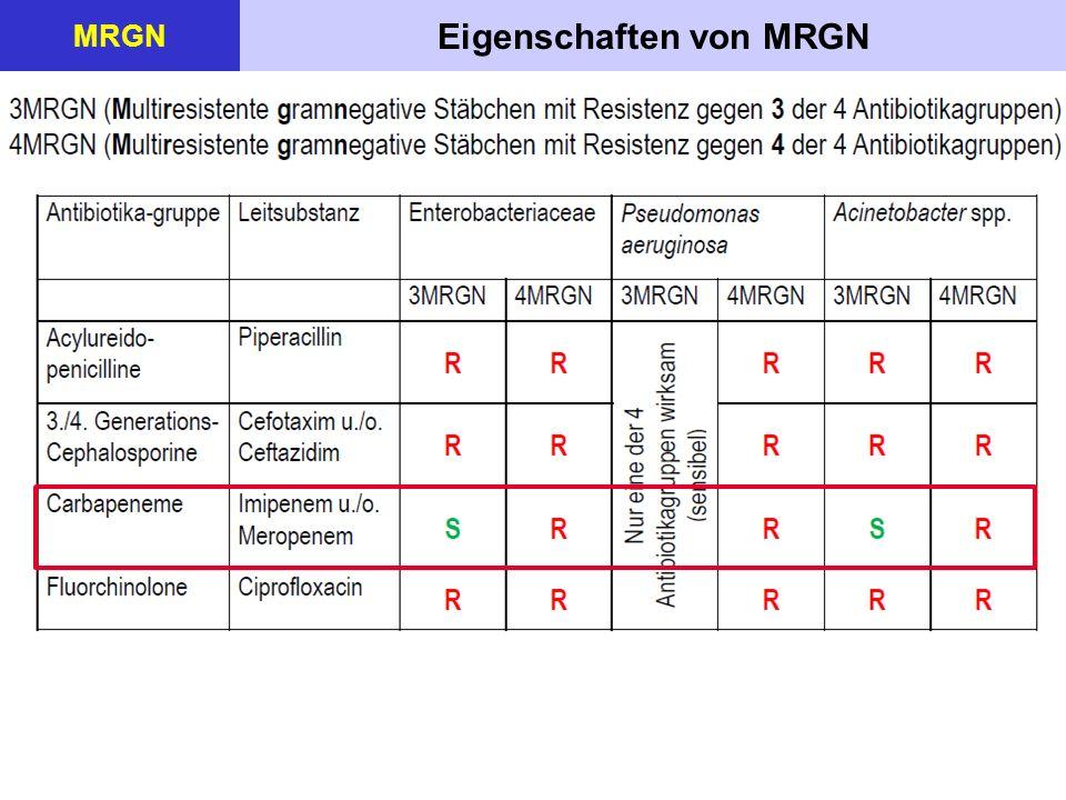 Maßnahmen bei MRGN MRGN  Eine Übertragungsgefahr besteht vor allem bei der Durchführung medizinisch- pflegerischer Maßnahmen.
