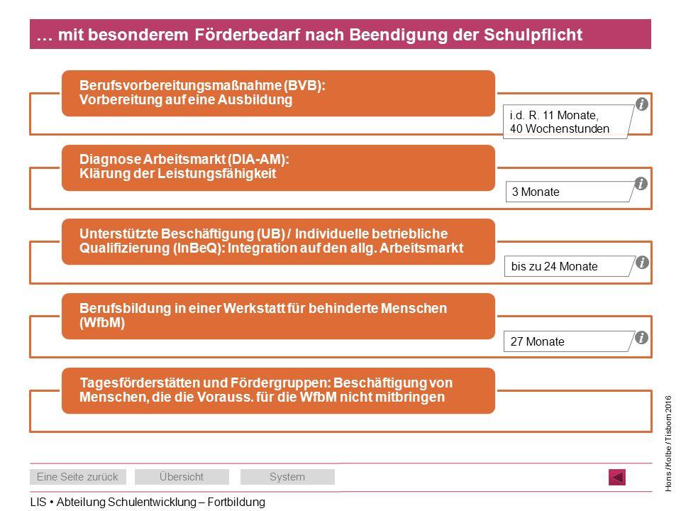 LIS Abteilung Schulentwicklung – Fortbildung Eine Seite zurückÜbersichtSystem Hons / Kolbe / Tisborn 2016 … mit besonderem Förderbedarf nach Beendigung der Schulpflicht Berufsvorbereitungsmaßnahme (BVB): Vorbereitung auf eine Ausbildung Diagnose Arbeitsmarkt (DIA-AM): Klärung der Leistungsfähigkeit Unterstützte Beschäftigung (UB) / Individuelle betriebliche Qualifizierung (InBeQ): Integration auf den allg.