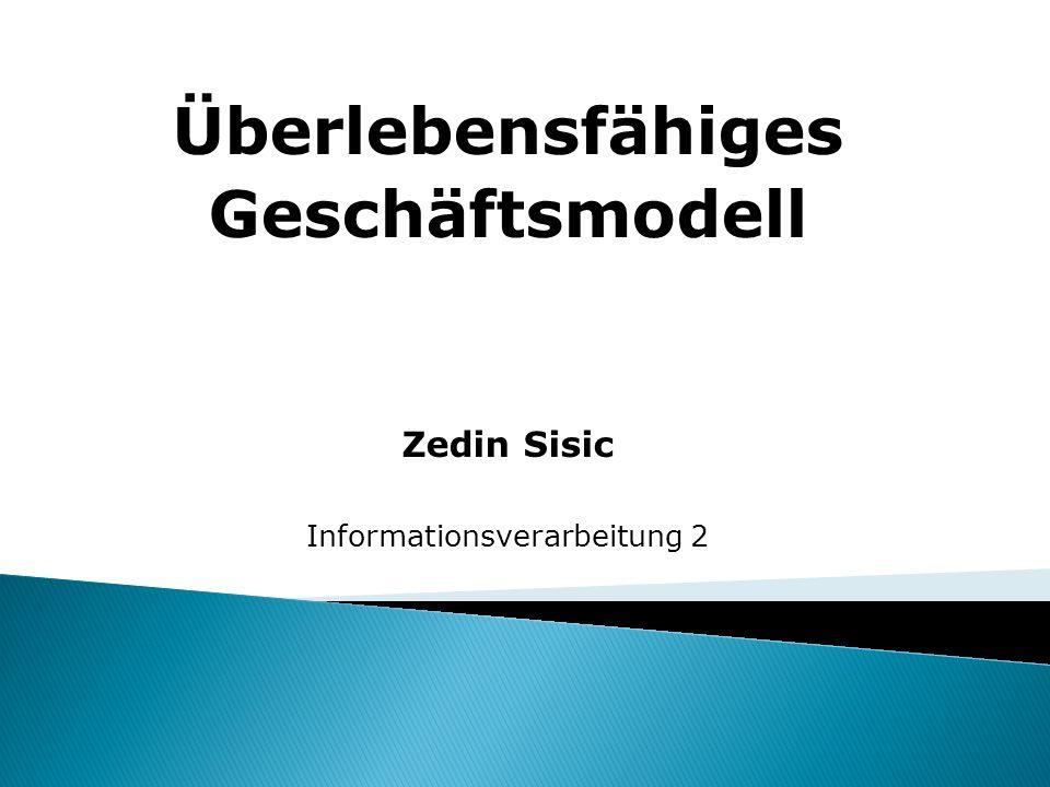 Überlebensfähiges Geschäftsmodell Zedin Sisic Informationsverarbeitung 2