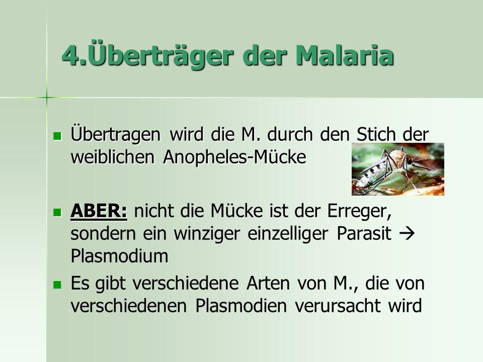 4.Überträger der Malaria Übertragen wird die M.