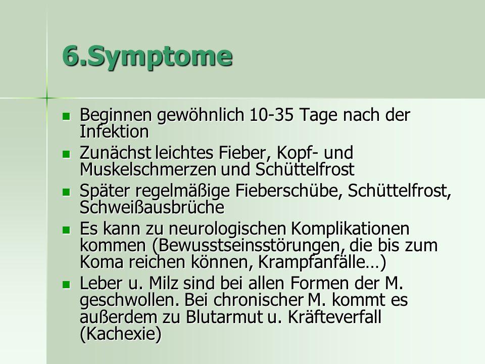 6.Symptome Beginnen gewöhnlich 10-35 Tage nach der Infektion Beginnen gewöhnlich 10-35 Tage nach der Infektion Zunächst leichtes Fieber, Kopf- und Muskelschmerzen und Schüttelfrost Zunächst leichtes Fieber, Kopf- und Muskelschmerzen und Schüttelfrost Später regelmäßige Fieberschübe, Schüttelfrost, Schweißausbrüche Später regelmäßige Fieberschübe, Schüttelfrost, Schweißausbrüche Es kann zu neurologischen Komplikationen kommen (Bewusstseinsstörungen, die bis zum Koma reichen können, Krampfanfälle…) Es kann zu neurologischen Komplikationen kommen (Bewusstseinsstörungen, die bis zum Koma reichen können, Krampfanfälle…) Leber u.