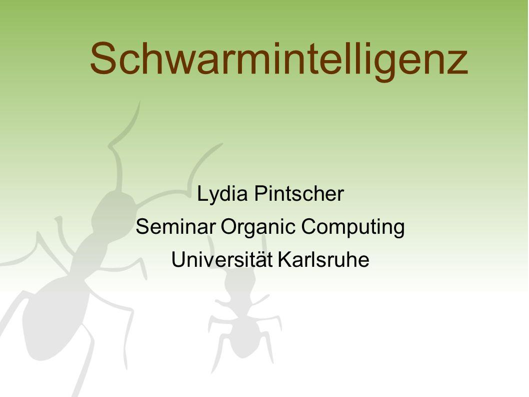 30.01.2008Lydia Pintscher - Schwarmintelligenz2 Gliederung 1.