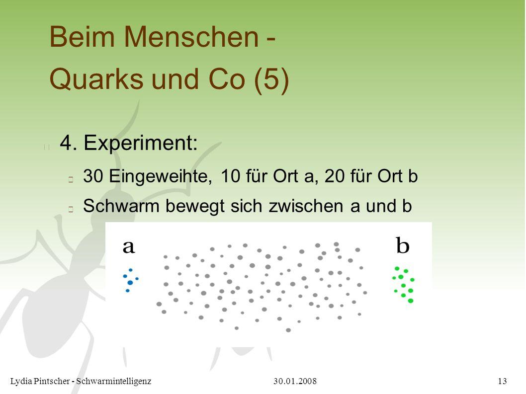 30.01.2008Lydia Pintscher - Schwarmintelligenz13 Beim Menschen - Quarks und Co (5) 4. Experiment: 30 Eingeweihte, 10 für Ort a, 20 für Ort b Schwarm b