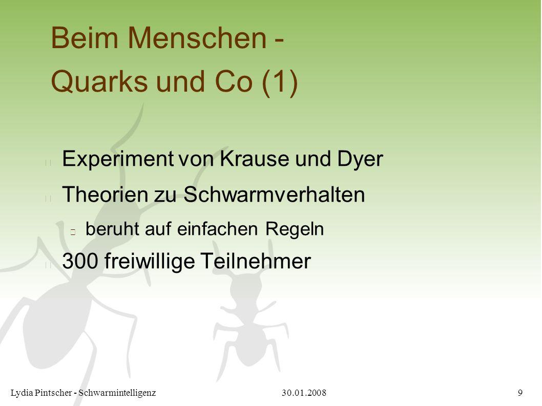 30.01.2008Lydia Pintscher - Schwarmintelligenz9 Beim Menschen - Quarks und Co (1) Experiment von Krause und Dyer Theorien zu Schwarmverhalten beruht auf einfachen Regeln 300 freiwillige Teilnehmer