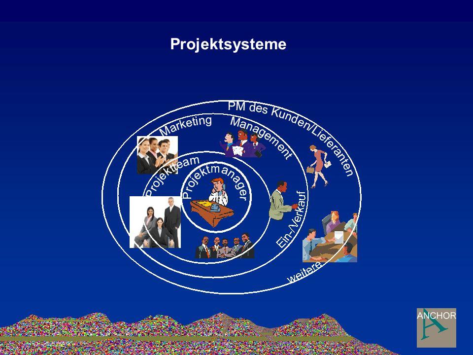 Projektsysteme