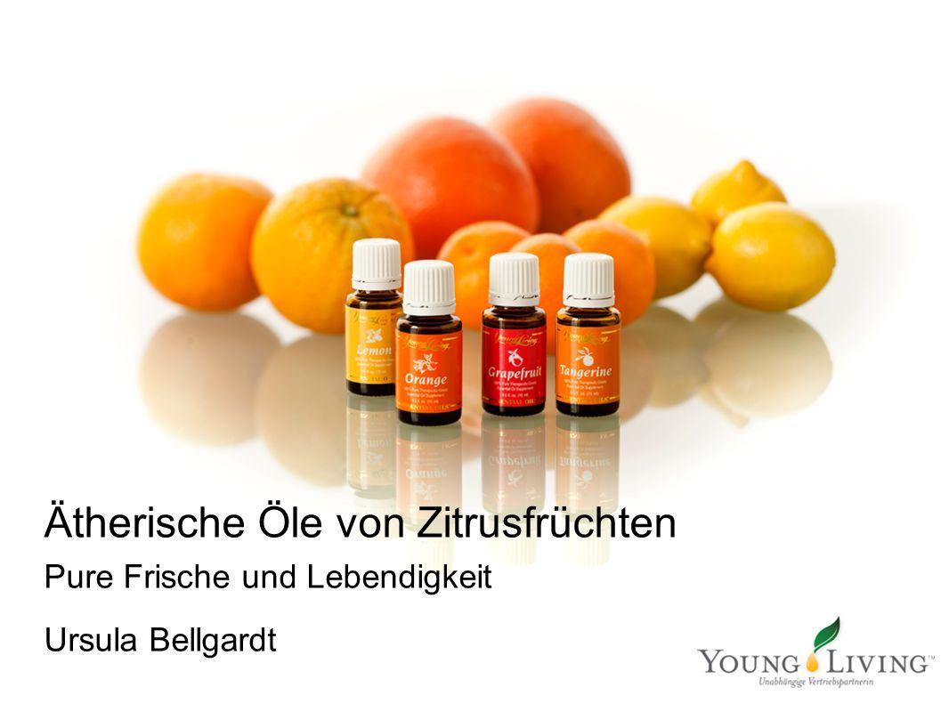 Ätherische Öle von Zitrusfrüchten Pure Frische und Lebendigkeit Ursula Bellgardt