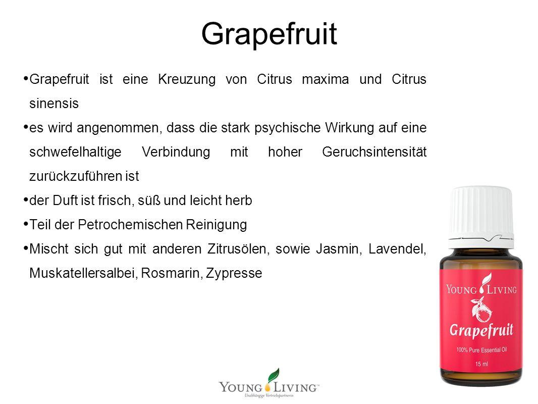 Innere Reinigung nach den 5 Wandlungsphasen Mit ätherischen Ölen von Young Living Grapefruit Grapefruit ist eine Kreuzung von Citrus maxima und Citrus
