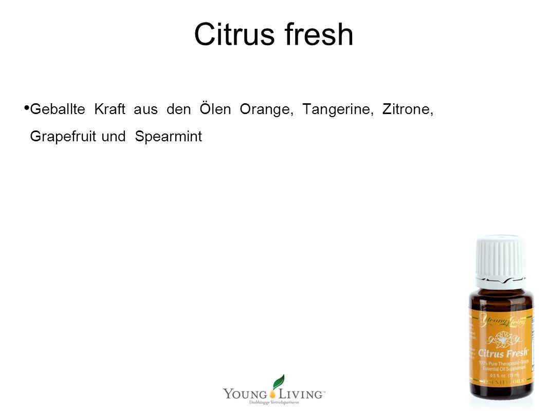 Innere Reinigung nach den 5 Wandlungsphasen Mit ätherischen Ölen von Young Living Citrus fresh Geballte Kraft aus den Ölen Orange, Tangerine, Zitrone, Grapefruit und Spearmint