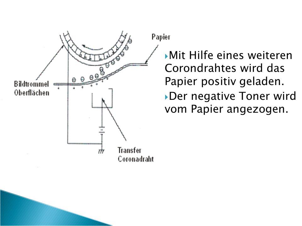  Mit Hilfe eines weiteren Corondrahtes wird das Papier positiv geladen.