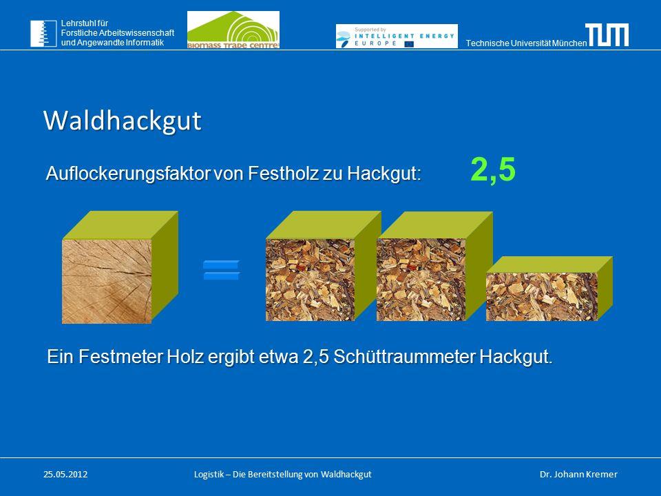 Technische Universität München Lehrstuhl für Forstliche Arbeitswissenschaft und Angewandte Informatik Logistik – Die Bereitstellung von Waldhackgut Au