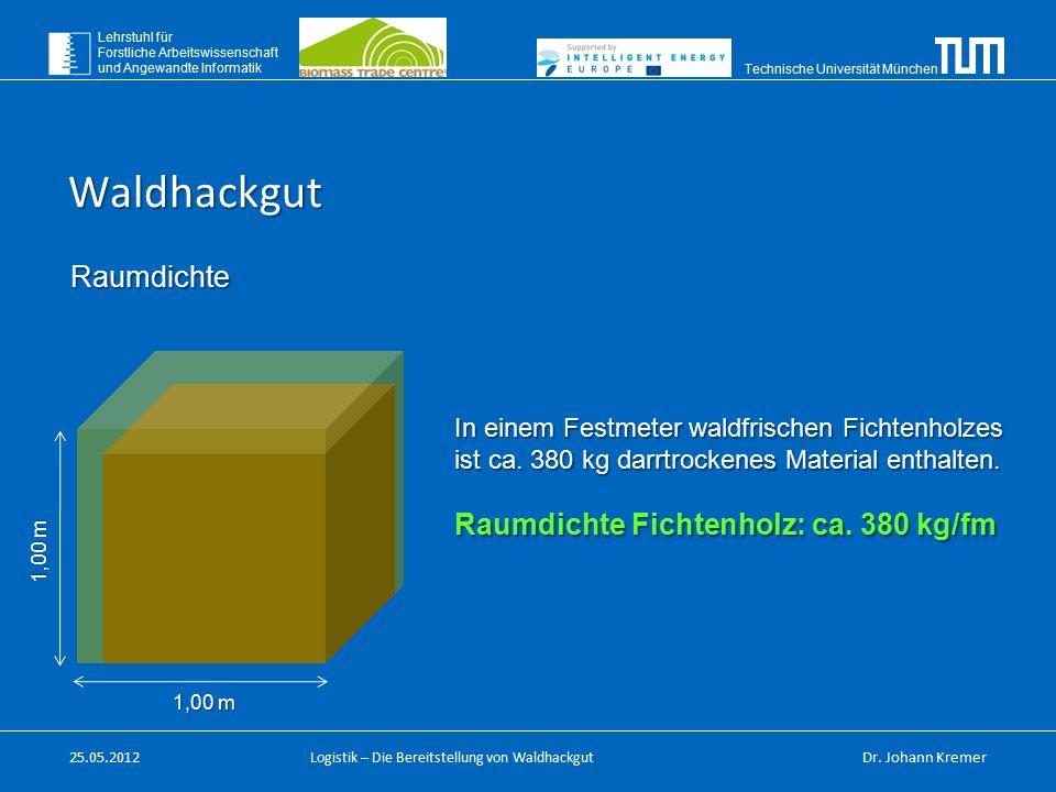 Technische Universität München Lehrstuhl für Forstliche Arbeitswissenschaft und Angewandte Informatik Logistik – Die Bereitstellung von Waldhackgut Ra