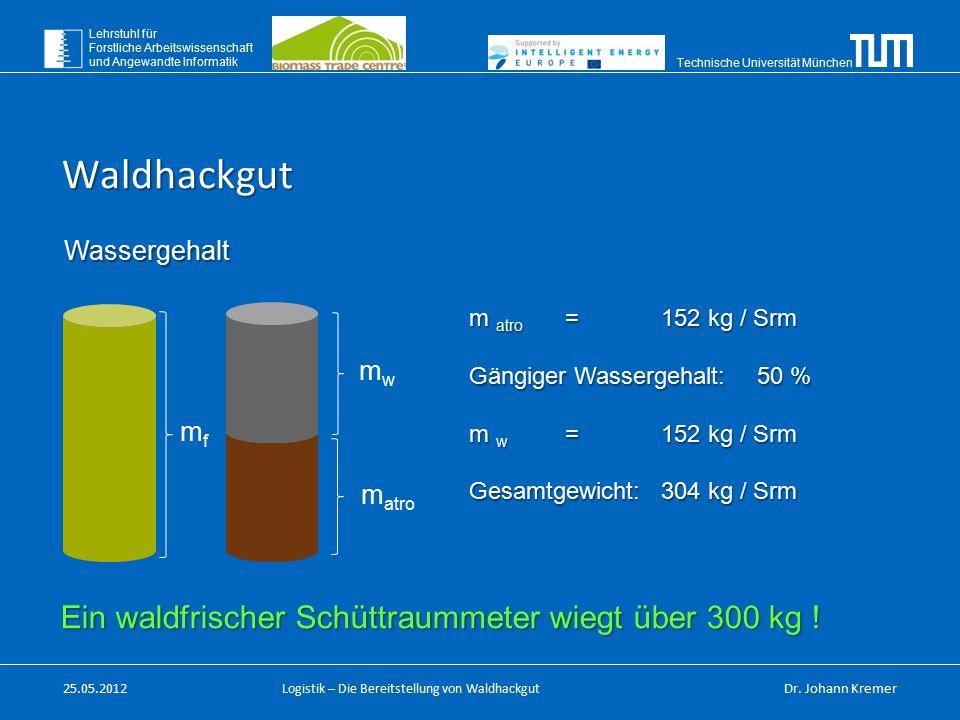 Technische Universität München Lehrstuhl für Forstliche Arbeitswissenschaft und Angewandte Informatik Logistik – Die Bereitstellung von Waldhackgut Wa